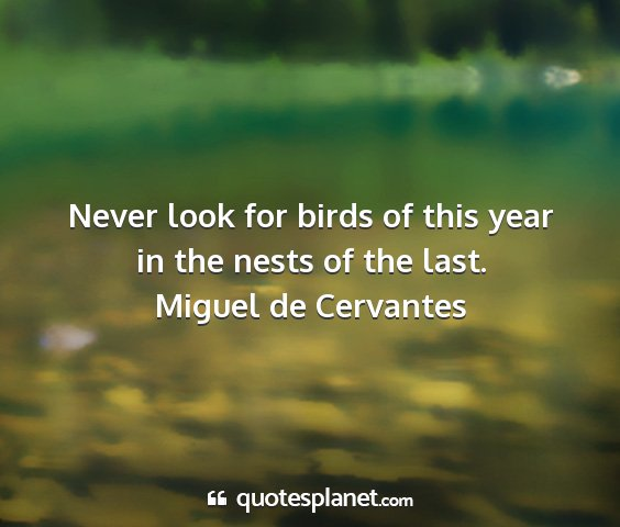 Miguel de cervantes - never look for birds of this year in the nests of...