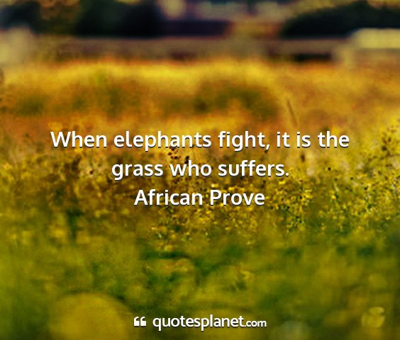 African prove - when elephants fight, it is the grass who suffers....