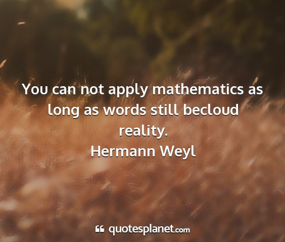 Hermann weyl - you can not apply mathematics as long as words...