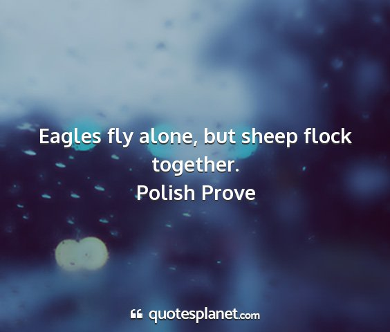 Polish prove - eagles fly alone, but sheep flock together....