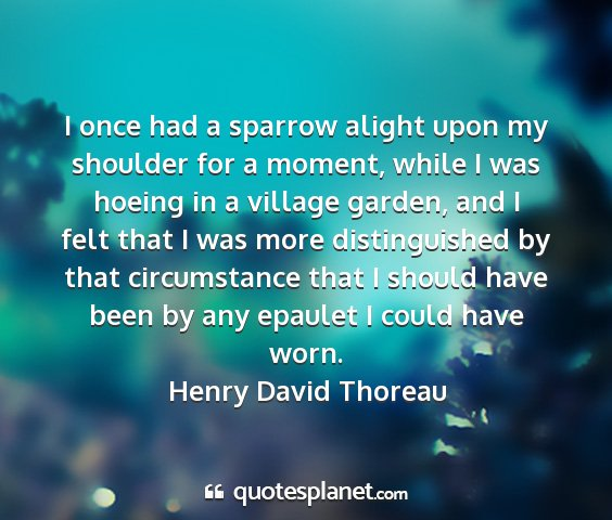 Henry david thoreau - i once had a sparrow alight upon my shoulder for...